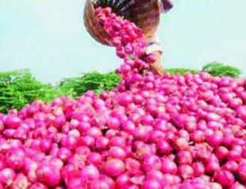 Week25 Weekly Commentary Lasalgaon Bazar Samiti aajcha kanda bajar bhav, लासलगाव बाजारपेठ onion rate nashik lasalgaon baajar smiti kanda dar, onion, kanda, lasalgoan bajar bhaav, nashik bajar bhaav, sheti bajar bhaav आजचा कांदा भाव, लासलगाव बाजार समिती, उन्हाळ कांदा, कांदा बाजार भाव, मनमाड, चांदवड, सटाणा, कळवण, नाशिक लाल कांदा