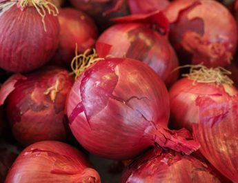 aajcha kanda bhaav onion rates today 21July 2018 lasalgaon maharashtra, आजचा कांदा भाव, Aajcha kanda bhaav onion rates today 21May 2018 Nashik Lasalgaon, 21 May 2018 नाशिक, लासलगाव सह राज्यातील बाजारपेठ आजचा कांदा भाव 21 मे 2018 महाराष्ट्र बाजारभाव शेतमालकांदादर प्रती क्विंटल kanda bajar bhav live latest apmc news agriculture produce market kanda market marathi batmya on web maharashtra, Aajcha kanda bhaav onion rates today 19 May 2018 Nashik, Lasalgaon, नाशिक, लासलगाव सह राज्यातील बाजारपेठेतील आजचा कांदा भाव मे, आजचा कांदा भाव, नाशिक कांदा भाव, दर लासलगाव बाजारपेठ lasalgoan kanda market आजचे बाजार भाव कांद्याचे दर 2018 kanda bajar bhav live latest apmc news agriculture produce market maharashtra nashik onion rates Aajcha Kanda bhaav rates today 27 Sept 2019 lasalgaon