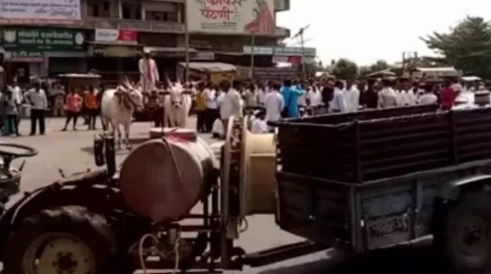 Shetkari Samp Farmers Strike Niphad rastaroko andolan onion spread roadwide, शेतकरी संप निफाड राष्ट्रवादी काँग्रेस रास्तारोको आंदोलन नाशिक