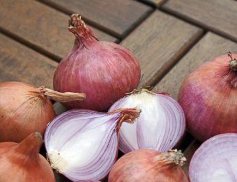 aaajcha kanda bhaav onion rates today 19june 2018 lasalgaon maharashtra आजचा कांदा भाव NashikOnion nashikonweb, aajcha kanda bhaav onion rates today 30July 2018 lasalgaon maharashtra