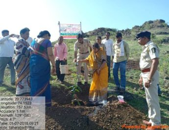 harit maharashtra vanamahotsav taharabad people planted four lakh saplings nashik