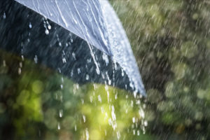 nashik rain Heavy Rains Warning Nashik weather meteorological department pune division maharashtra News Marathi Batmya अतिवृष्टी नाशिक हवामान खाते इशारा