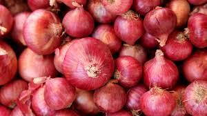 आजचा शेतमाल भाव : नाशिक सोबत राज्यातील कांदा बाजार भाव Maha kanda bhav lasalgaon 4 oct onion rates today Nashik News On Web Latest Updates आजचा कांदा बाजार भाव NashikOnWeb Marathi Batmya